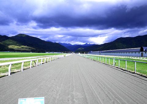 日高育成牧場(北海道)