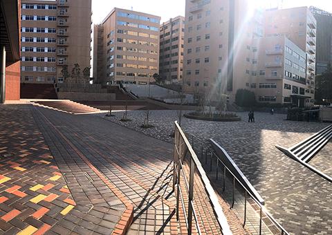 帝京大学町田キャンバス(東京))